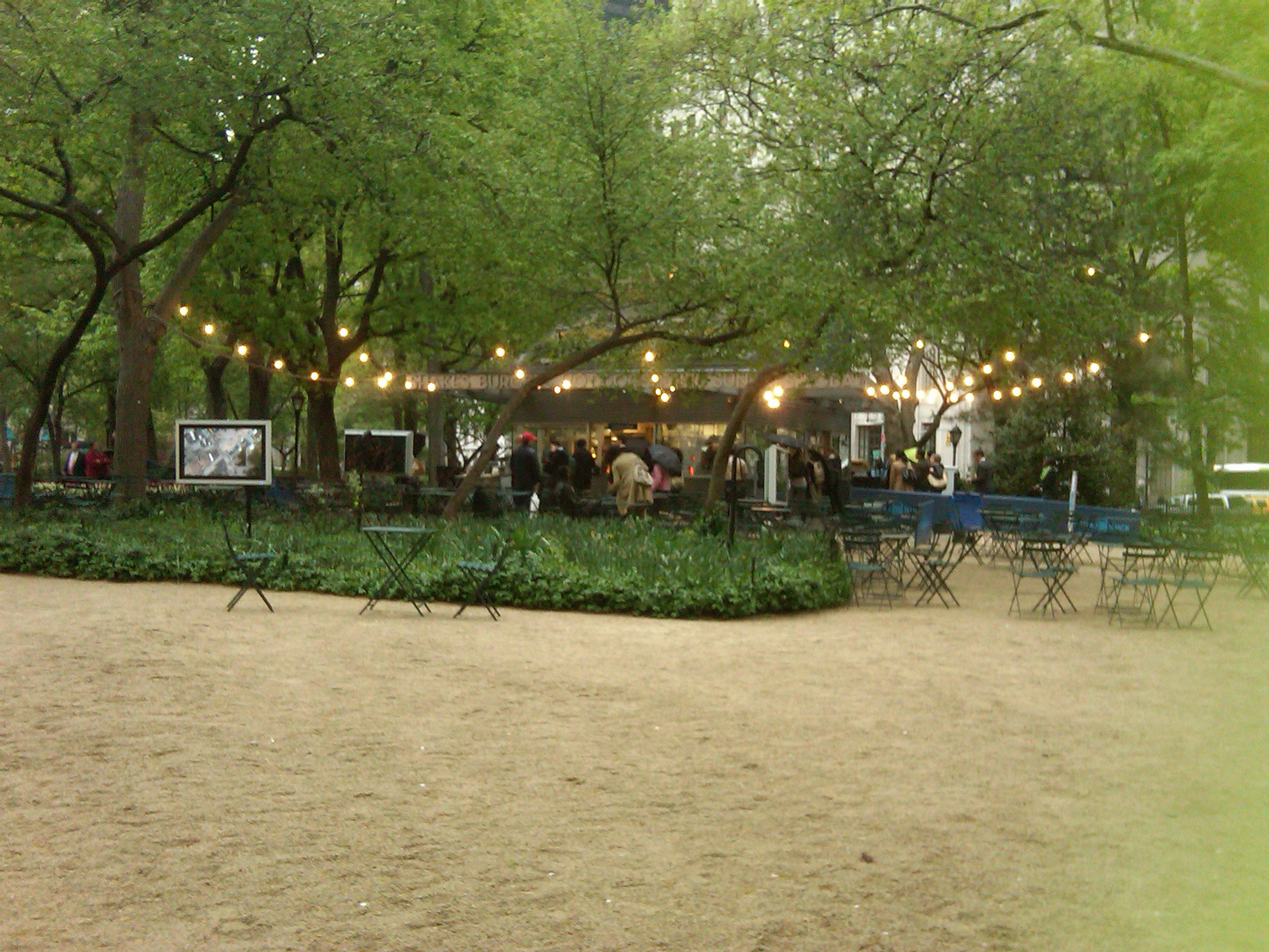 Shake Shack NYC | BECKY KRAUSE